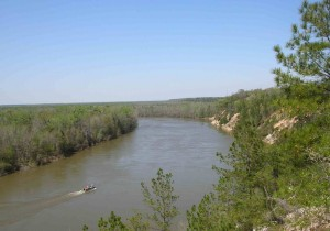 The Apalachicola River as seen from Alum Bluff in Liberty County.