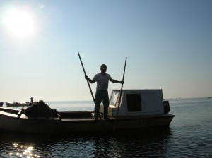 An oysterman uses tongs to harvest oysters in 2007.